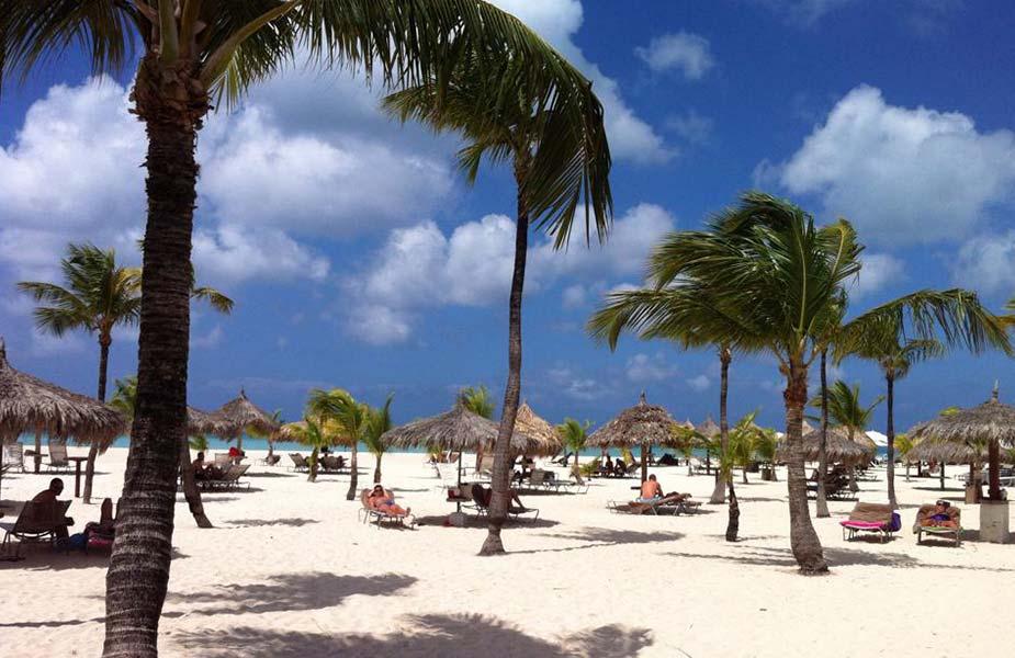 Zonnig strand met palbomen en ligbedjes