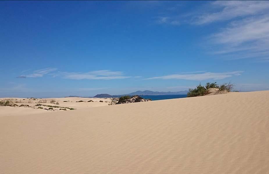 De typische woestijnduinen bij Corralejo