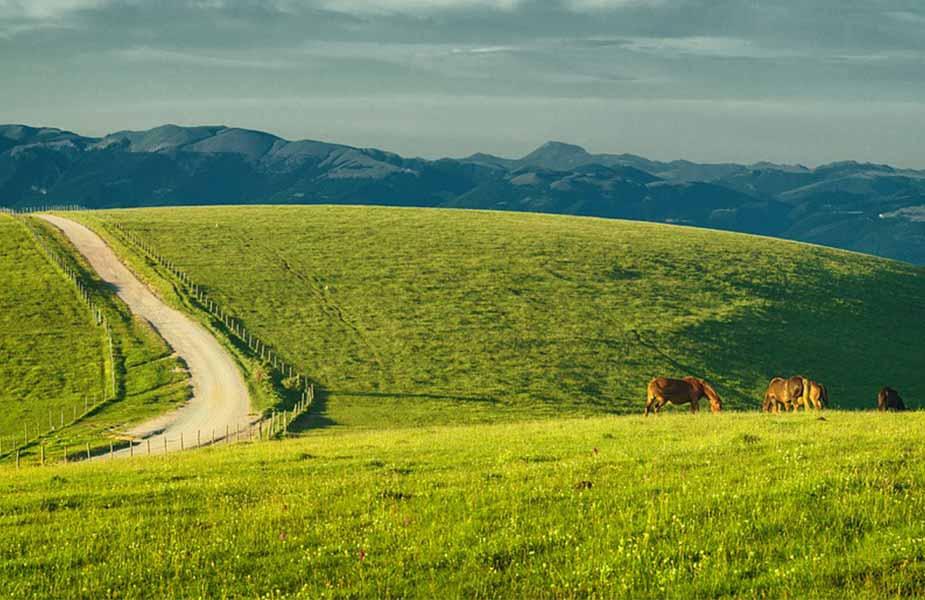De groene heuvels van Umbrie