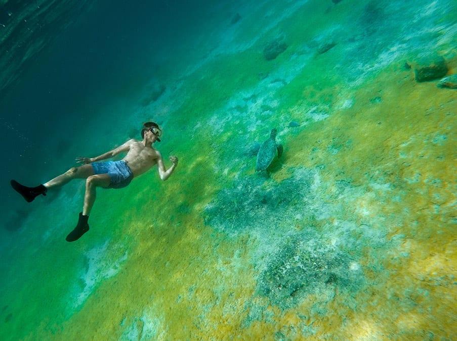 bonaire snorkelen