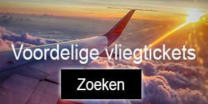 banner vliegtickets zoeken