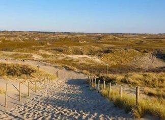 Mooie natuur bij de duinen