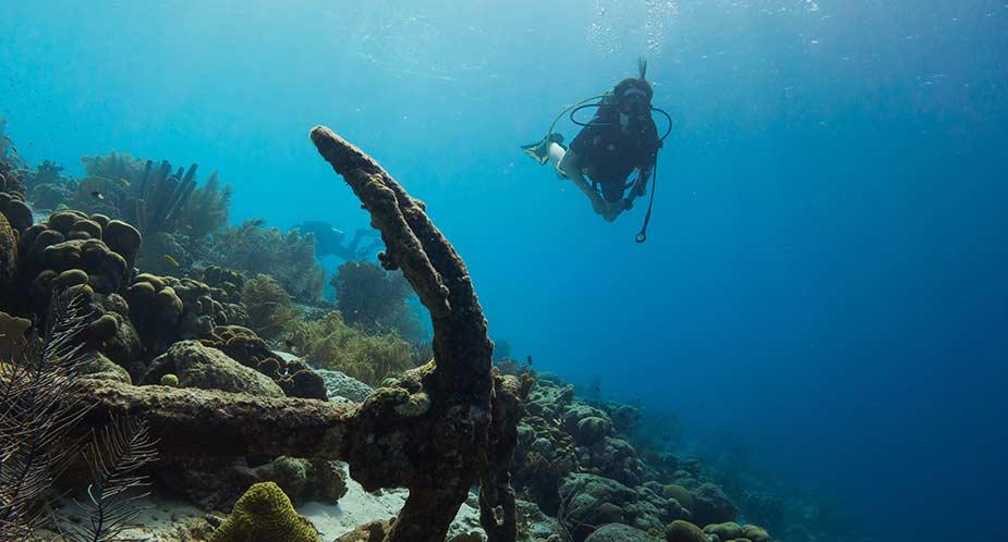 Een duiker in zee bij Bonaire