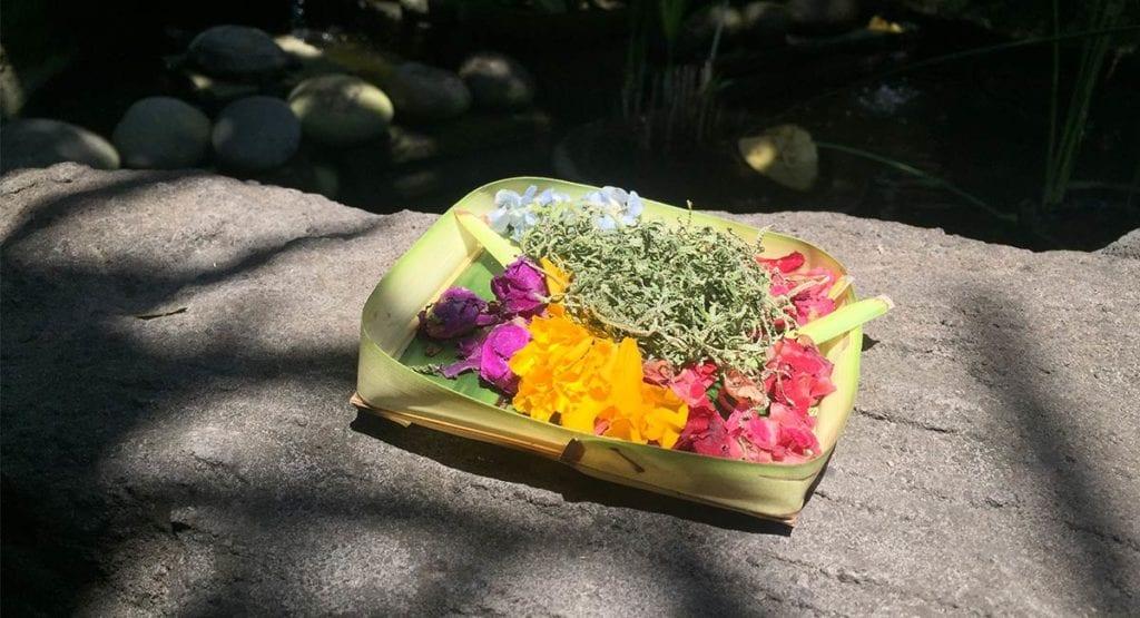 En offerbakje op Bali, dit kom je vaak tegen als je informatie over Bali zoekt.