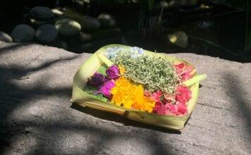 Offerbakje op Bali