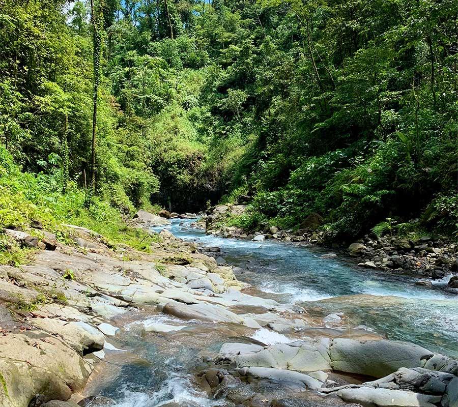 Dit rustgevend riviertje is tekenend voor Pura Vida Costa Rica