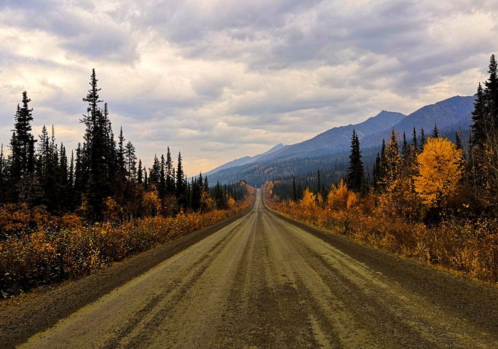 Road in canada - Daphne