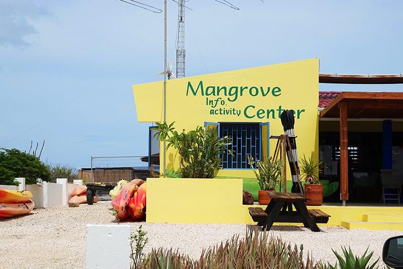 mangrove info bonaire