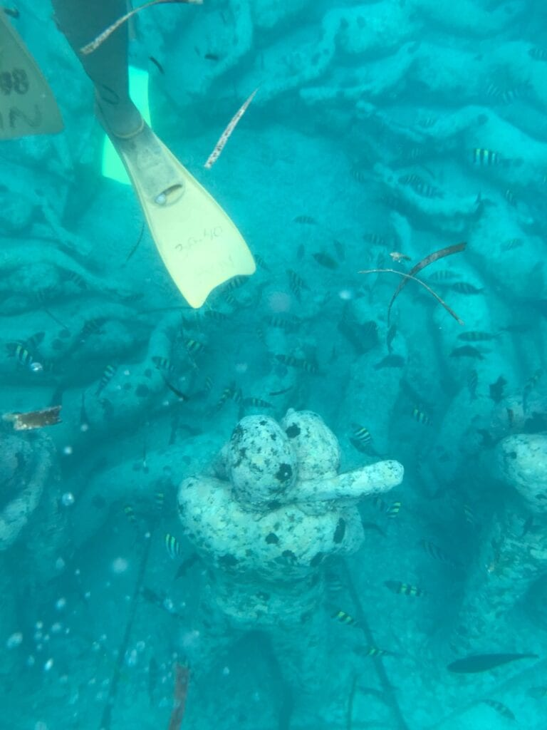 snorkel tour langs alle Gili-eilanden