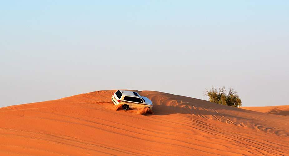 de woestijn in