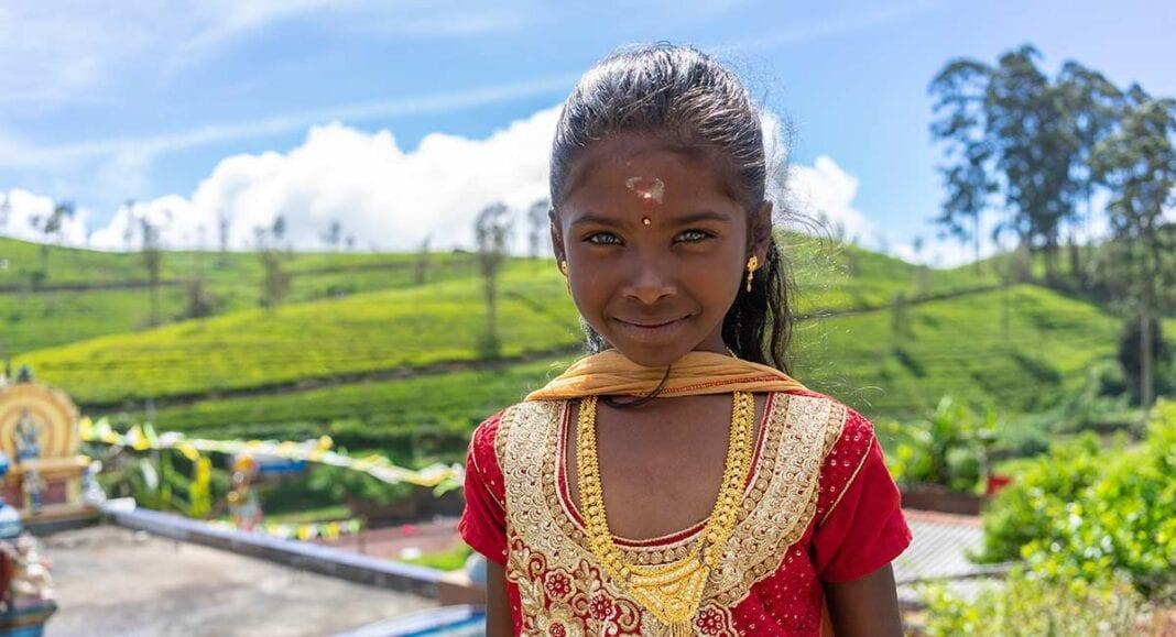 Singalees meisje bij de theeplantages