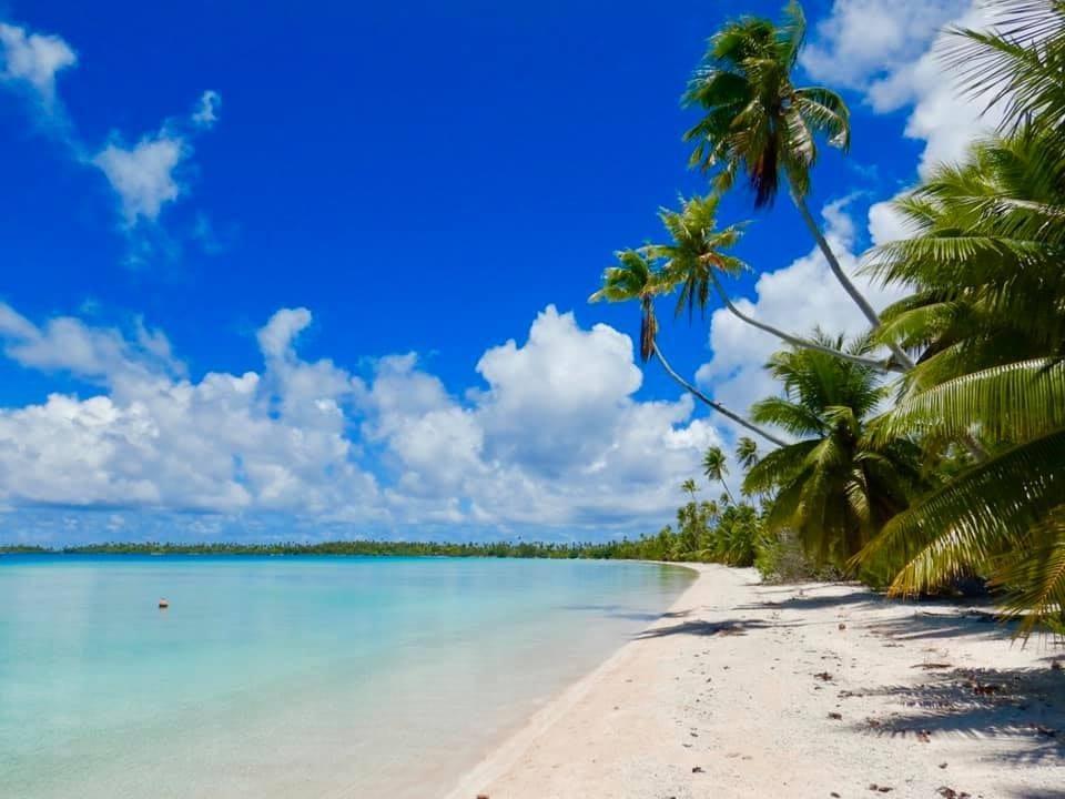 Zonovergoten eiland met palmbomen