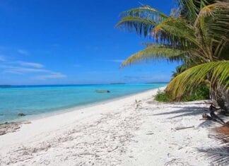 Tropisch strand op Frans Polynesie