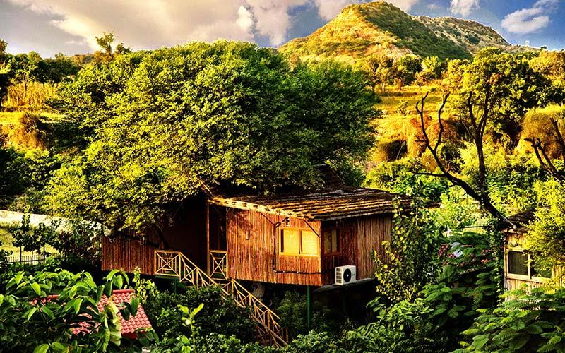 The Tree House Resort gelegen in de bomen in India