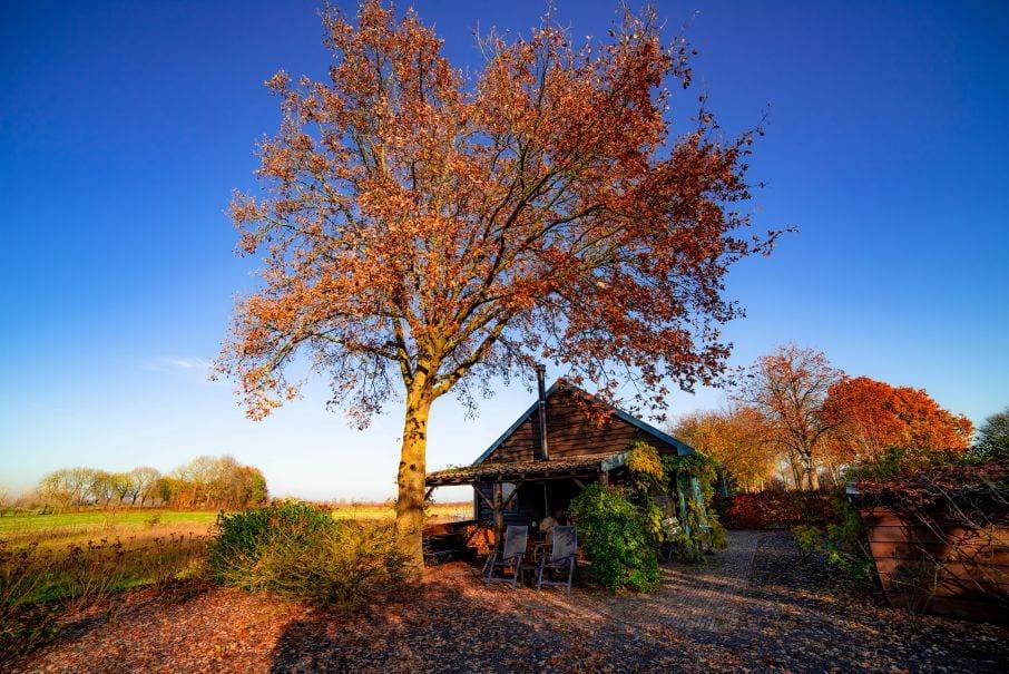 Huisje gelegen in rustige omgeving in Brummen