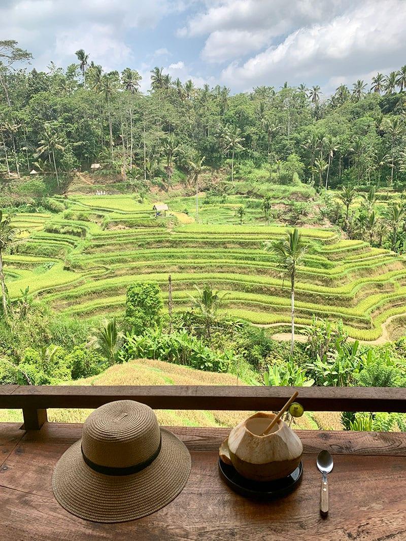 Rijstterrassen Ubud