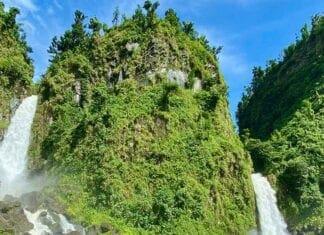 Veel groen en watervallen op Dominica