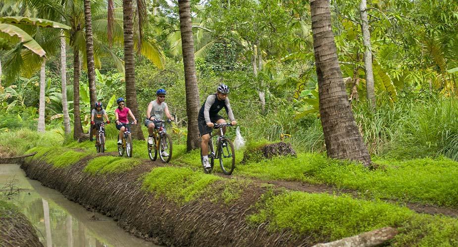 actief doen tijdens je reis naar Thailand, fietsen langs de plantages