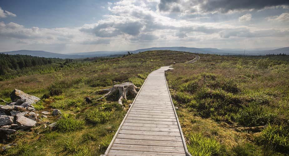Cavan Burren Park ierland