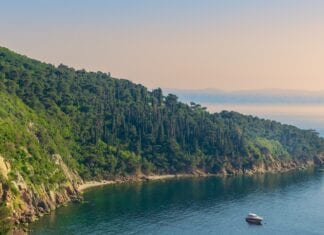 Istanbul Natuur Princess Islands Berg Kust