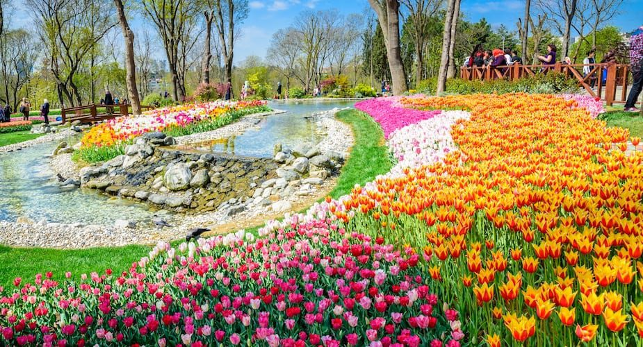 Emirgan park Istanbul