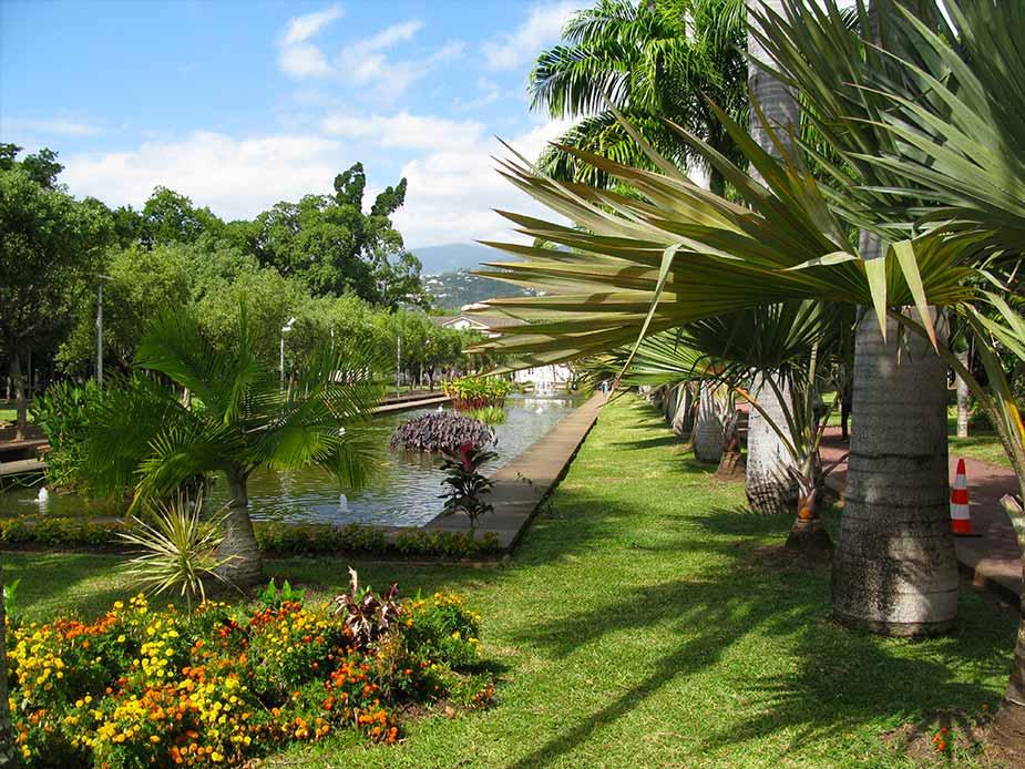Vegetatie in Le Jardin de L Etat