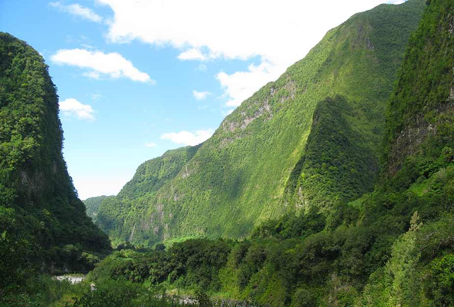 Natuur en bergen in La Reunion