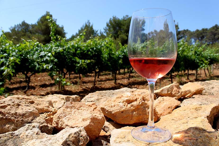 wijn gaarden op formentera