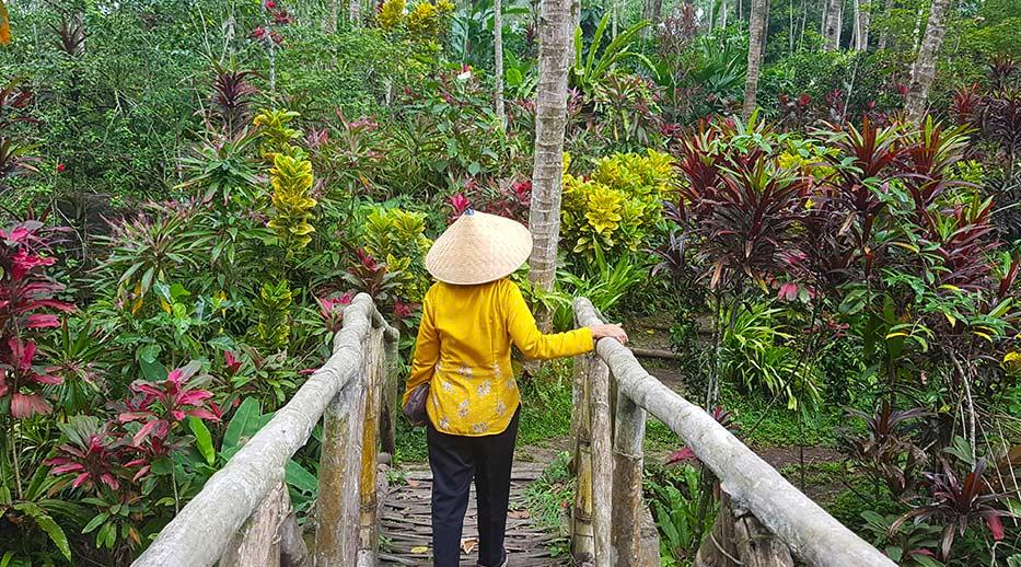 De gids wandelt over de brug naar de botanische tuin in Kalibaru