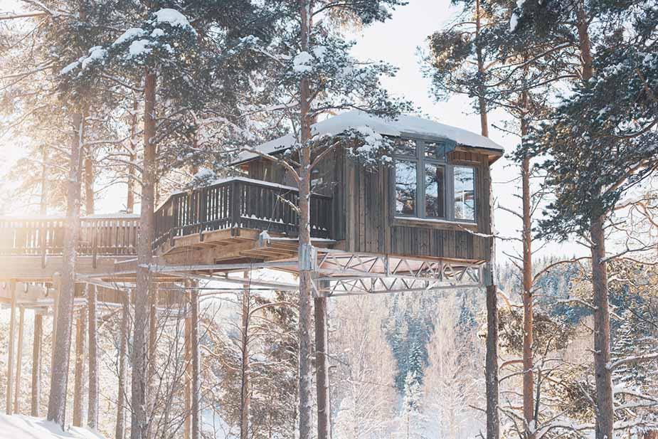 slapen in een boomhut in de unieke zweedse natuur