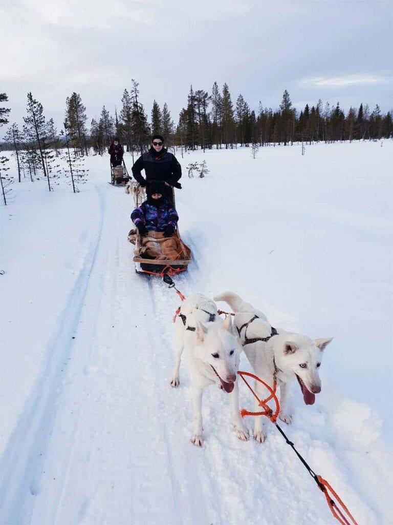 Valleria op husky safari in Lapland