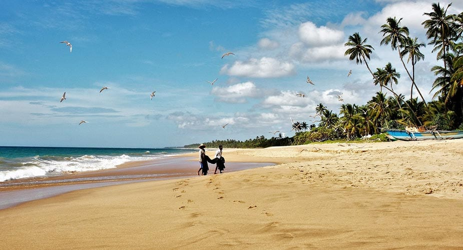 Strand met palmbomen op Sri Lanka