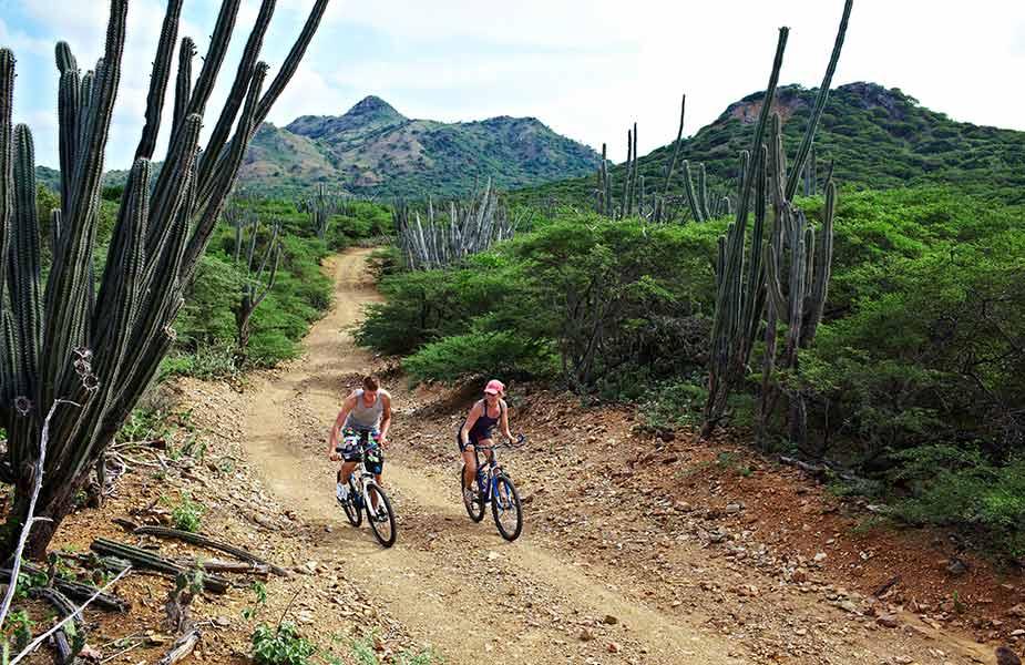 Fietsen en mountainbiken tijdens je reis naar Bonaire