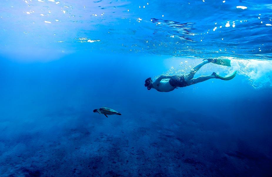 Schildpad bekijken tijdens het snorkelen