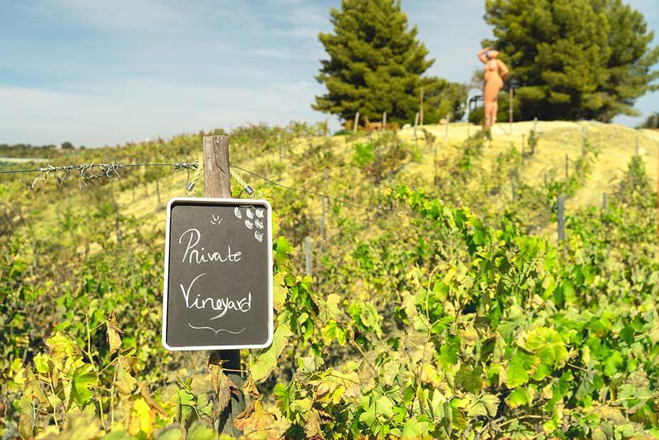 Quinta dos Vales wijnreis algarve