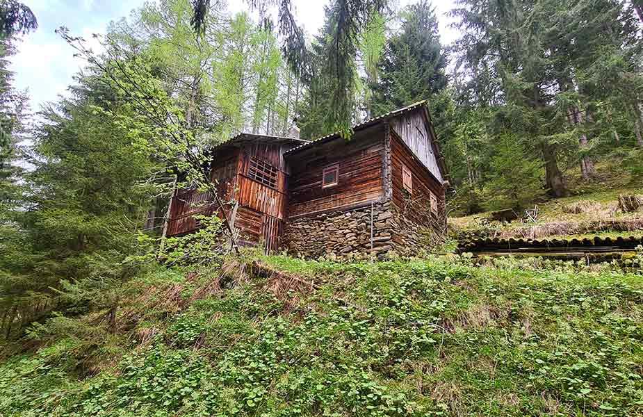 De midden in het bos gelegen Bruggerhutte