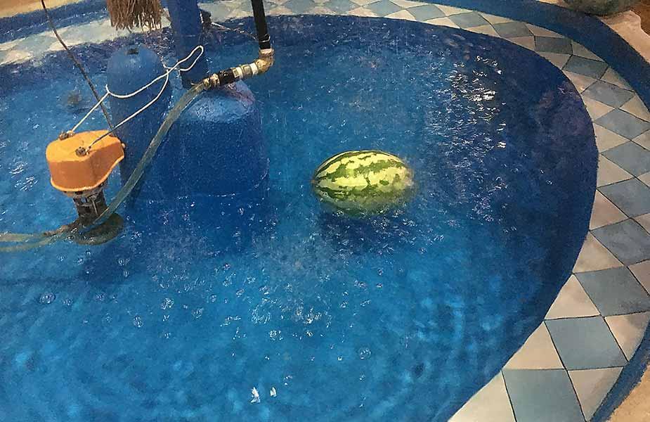 Watermeloen in een fontein om te koelen
