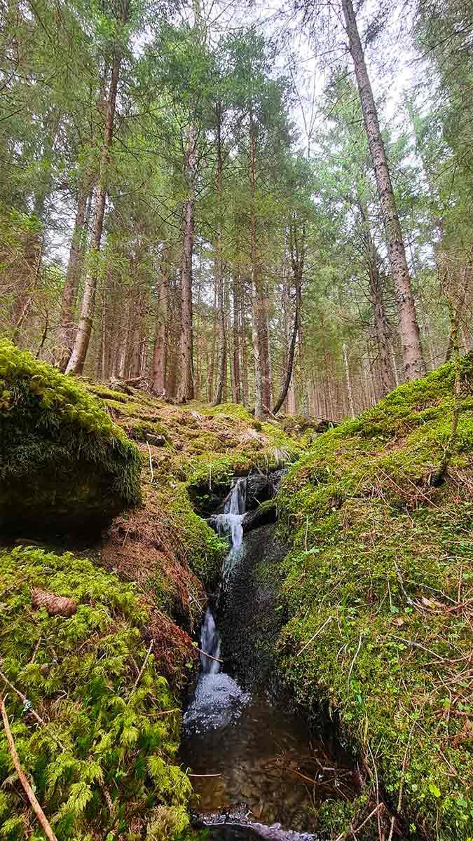 Watervalletje in bos bij Radenthein