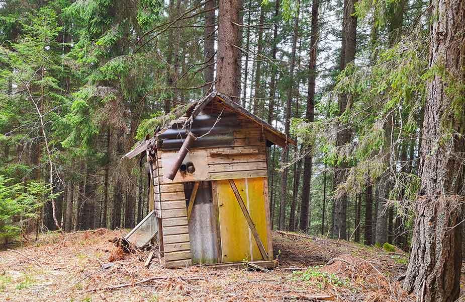 Klein hutje in het bos bij Radenthein