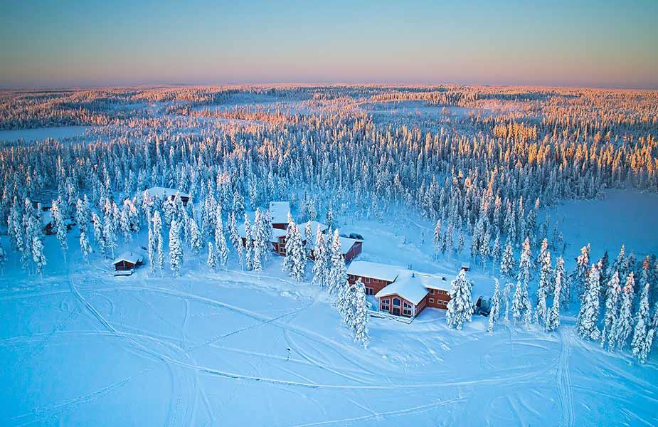 Overzicht van de Pinetree Lodge in Lapland