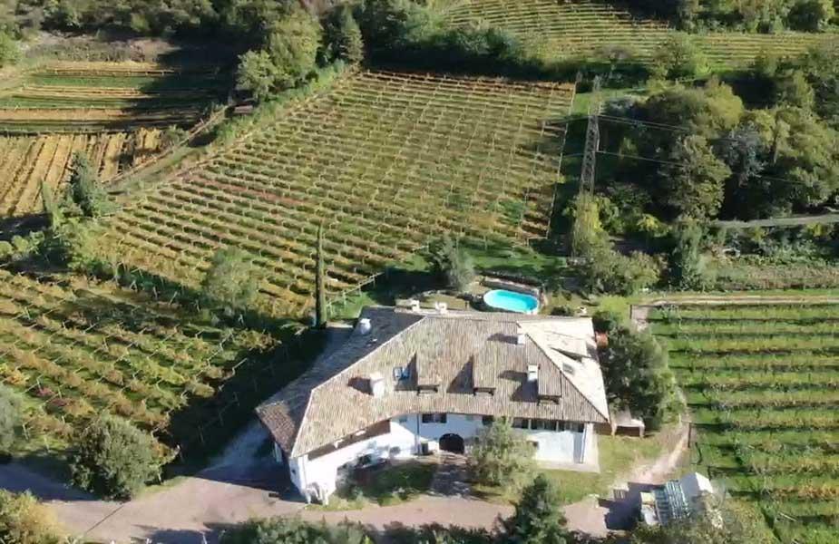 Vallarom wijngaarden in trentino
